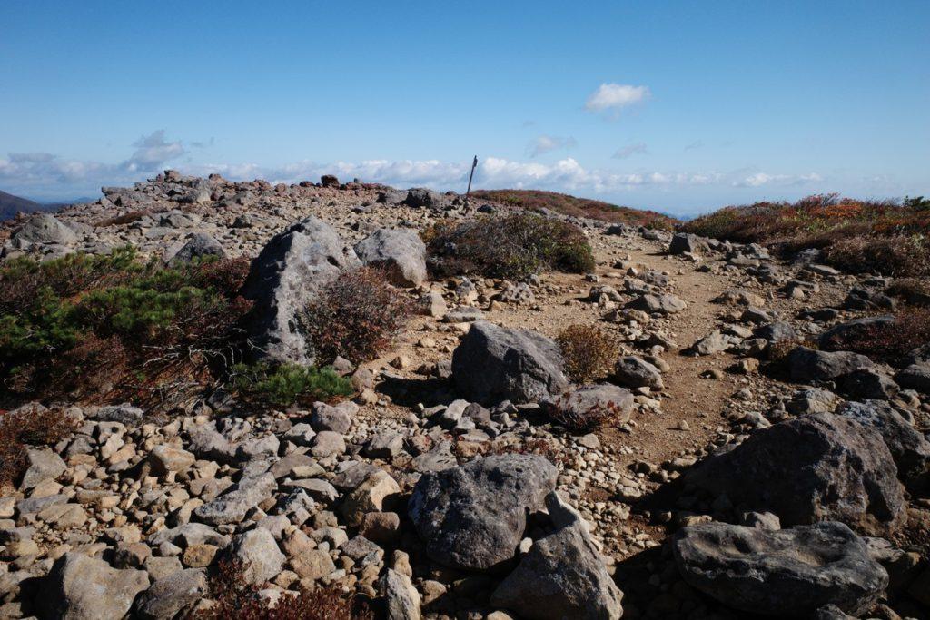 赤面山山頂下の広場